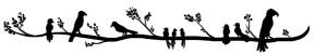 birds on a branch divider