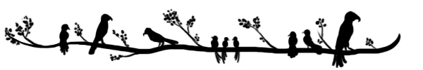 birds on a branch divider