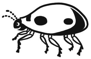 ocarina bug