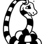 less-confident-snake