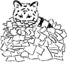 paper tiger cub