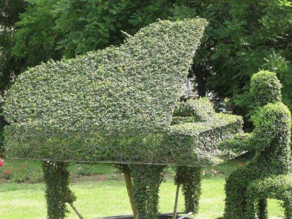 topiary piano